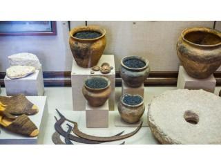 Ученые узнали вкусовые предпочтения древних людей благодаря посуде